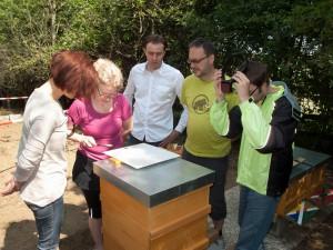 Völkerkontrolle durch die Neu-Imkergruppe: Untersuchung des Varroaschiebers