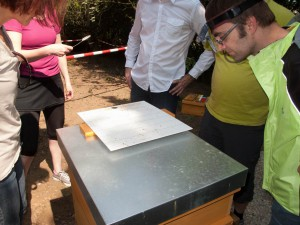 Völkerkontrolle durch die Neu-Imkergruppe: Inspektion der Varroamilbenwindel