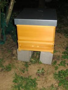 Bienenbeute mit dem Schwarm nach Verschluss des Fluglochs am 7.5.2015 um 21:25 Uhr