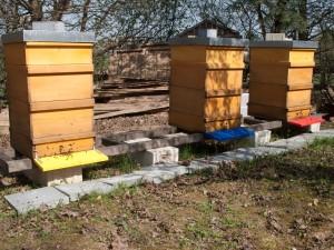 Aufgesetzte Honigräume