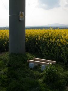 Vorbereiteter Standort in Rapsfeldern im Norden von Frankfurt. Hier bleiben die Bienen bis zum Abschluss der Rapsblüte stehen.