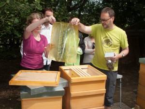 Völkerkontrolle durch die Neu-Imkergruppe: Öffnen einer Beute am Honigraum