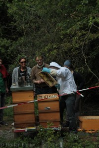 Neuimkergruppe und Gäste vom public beekeeping. In der Mitte Matthias Adler
